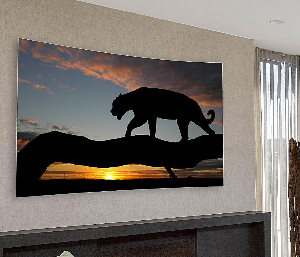 Full Motion Lg Tv Wall Mount For 55 Amp 65 Inch Oled Tv Lg