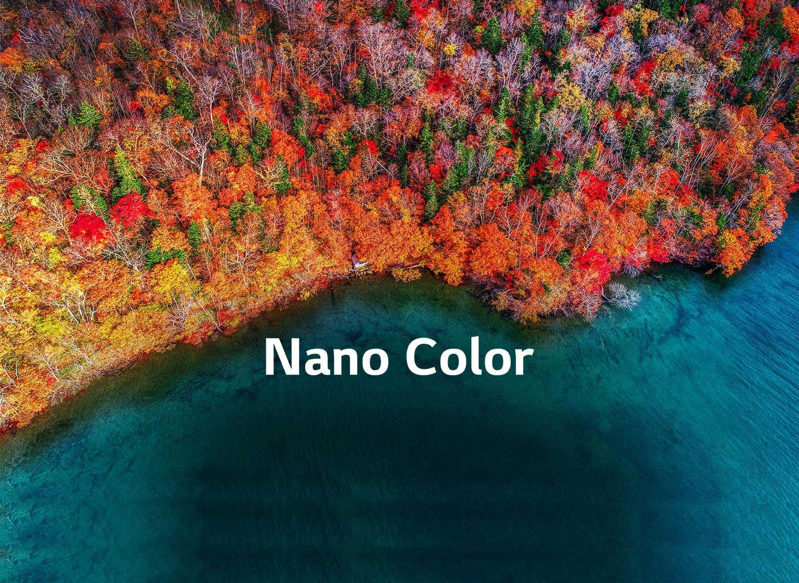 Une pureté de couleur raffinée1