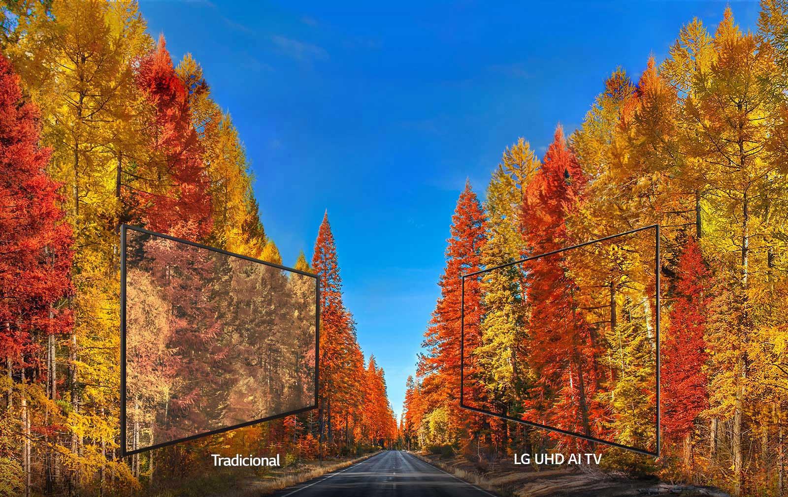 Painel IPS 4K: Imagens ideais de qualquer ângulo  A tecnologia IPS das LG UHD AI TVs, mantém cores mais  precisas e permite que todos apreciem a  imagem perfeita de qualquer ângulo.