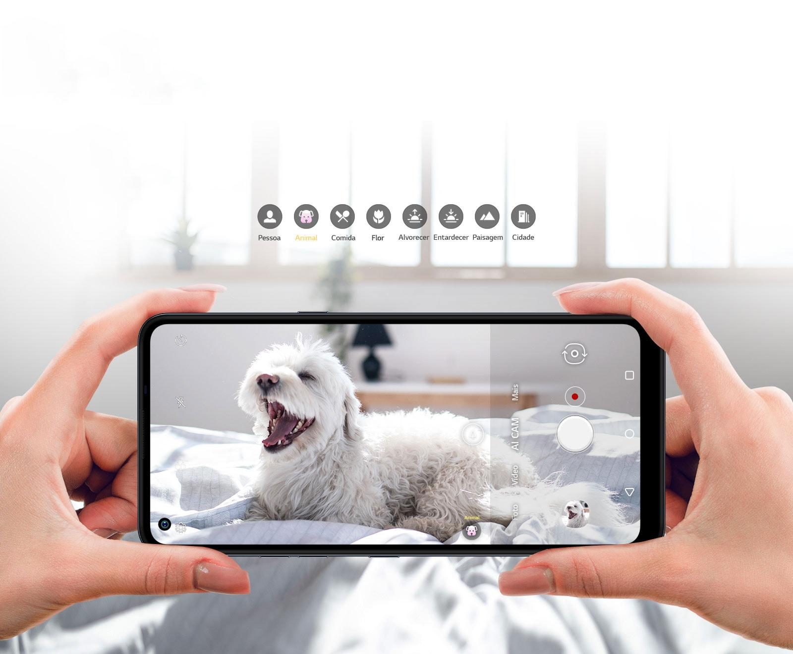 Close de uma pessoa fotografando um cachorro com o smartphone.