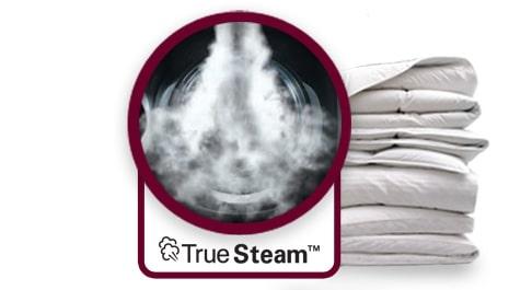 Vapor TrueSteam™