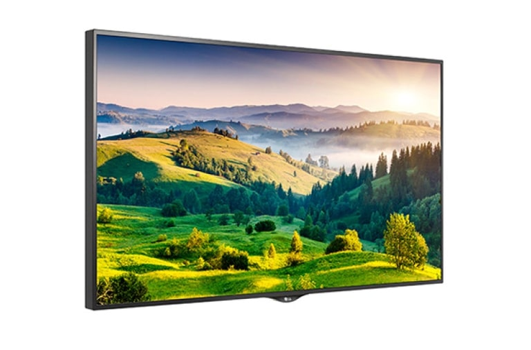 LG Digital Signage 65UH5B thumbnail 2