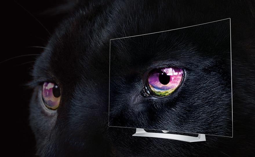 Dokonalá černá