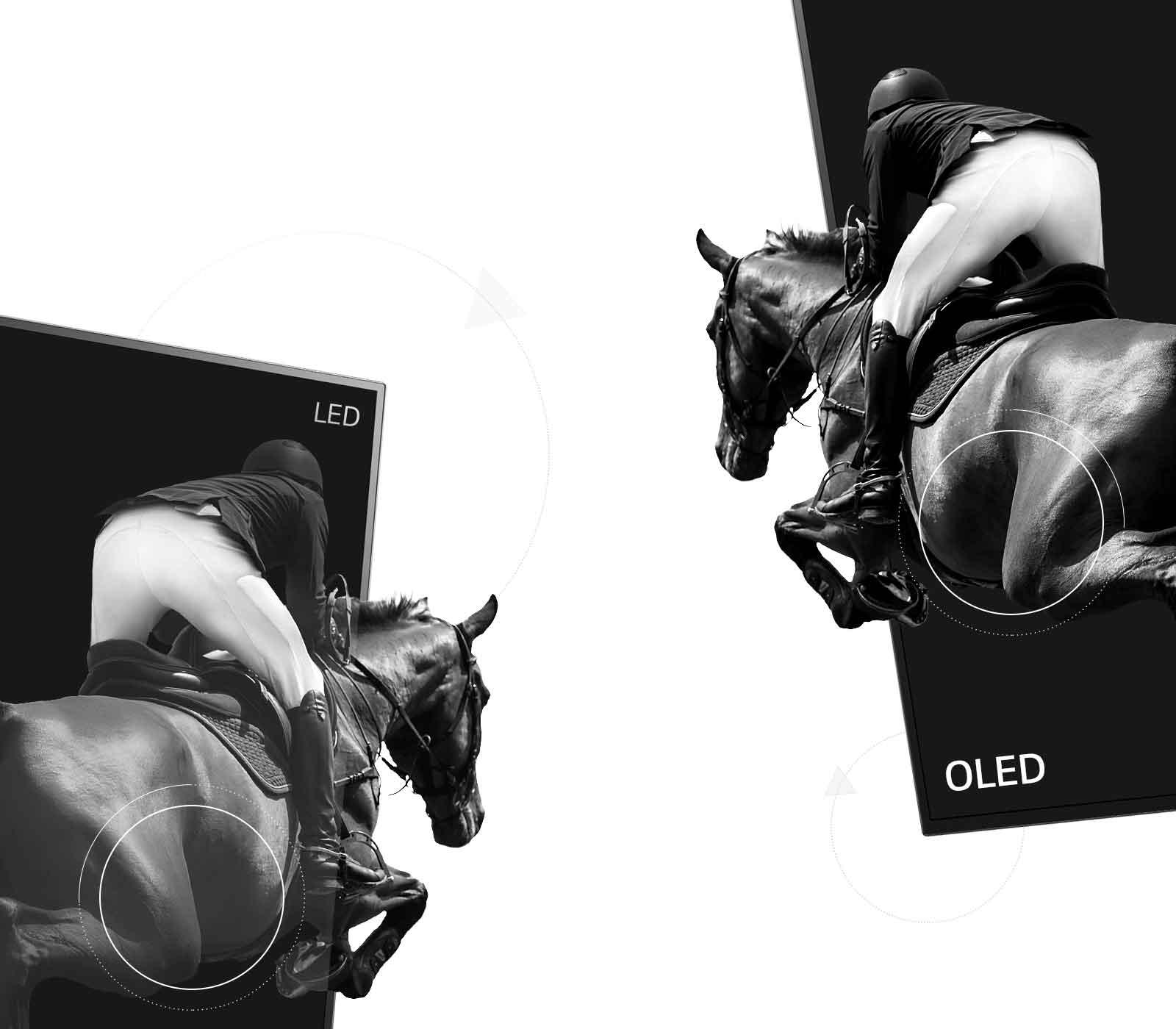 Prizor iz konjeniškega športa, enkrat na LED televiziji s slabim kontrastom in enkrat na OLED televiziji z neskončnim kontrastom (predvajanje videa)