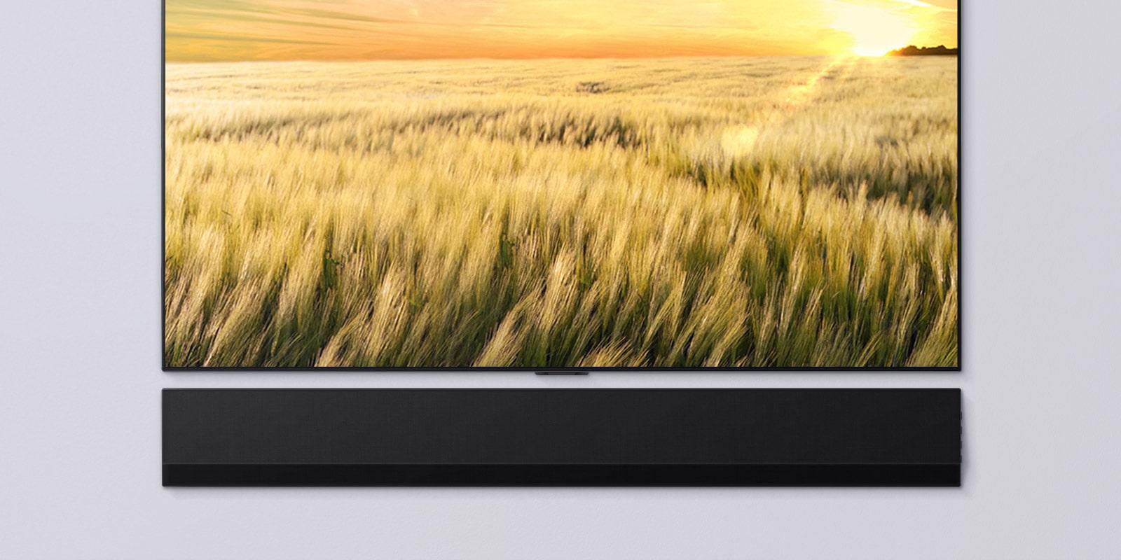 Frontansicht eines Fernsehers und einer Sound Bar. Der Fernseher zeigt ein Schilffeld bei Sonnenuntergang.
