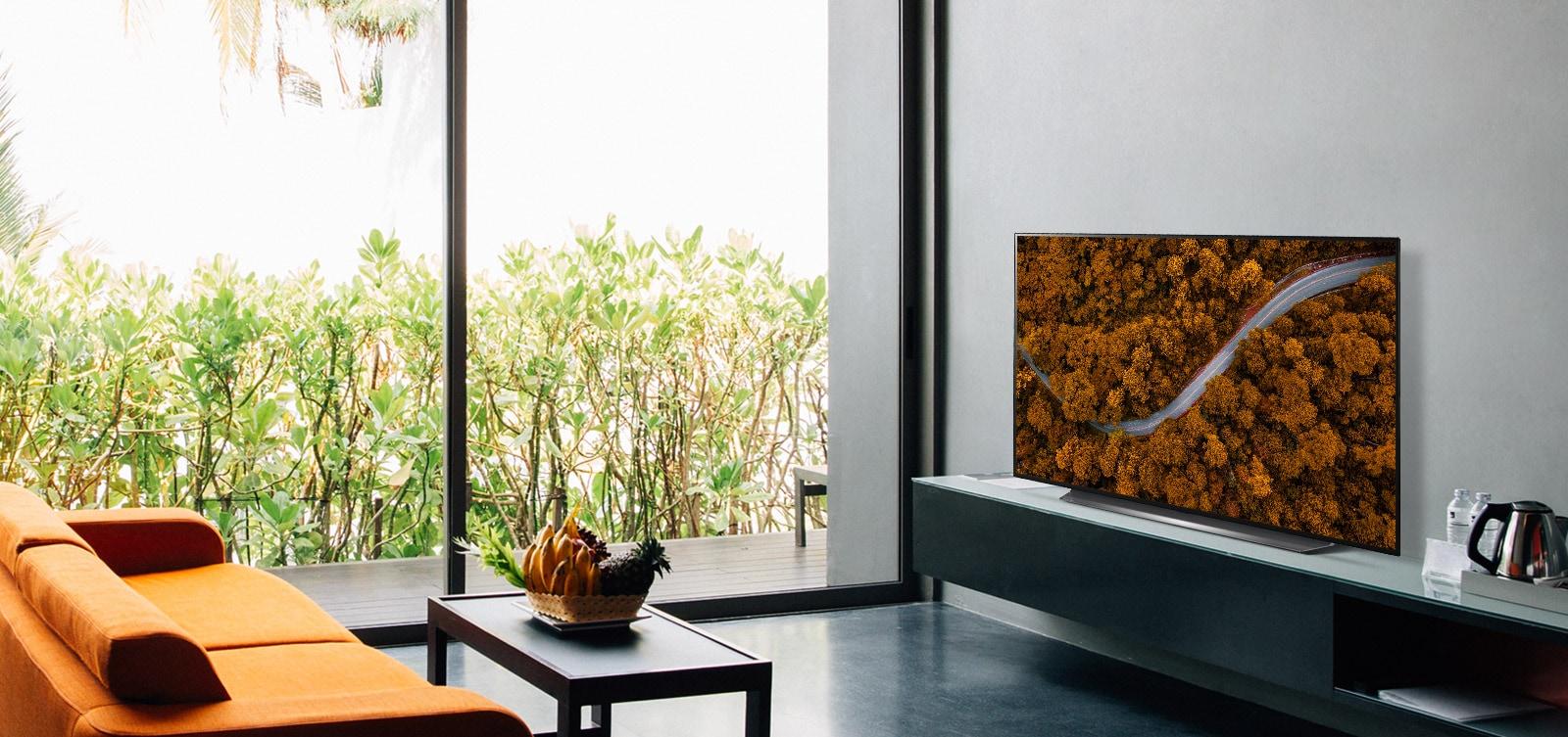 Wohnzimmer mit Sofa und Fernseher, auf dem eine Aufnahme eines Waldes zu sehen ist