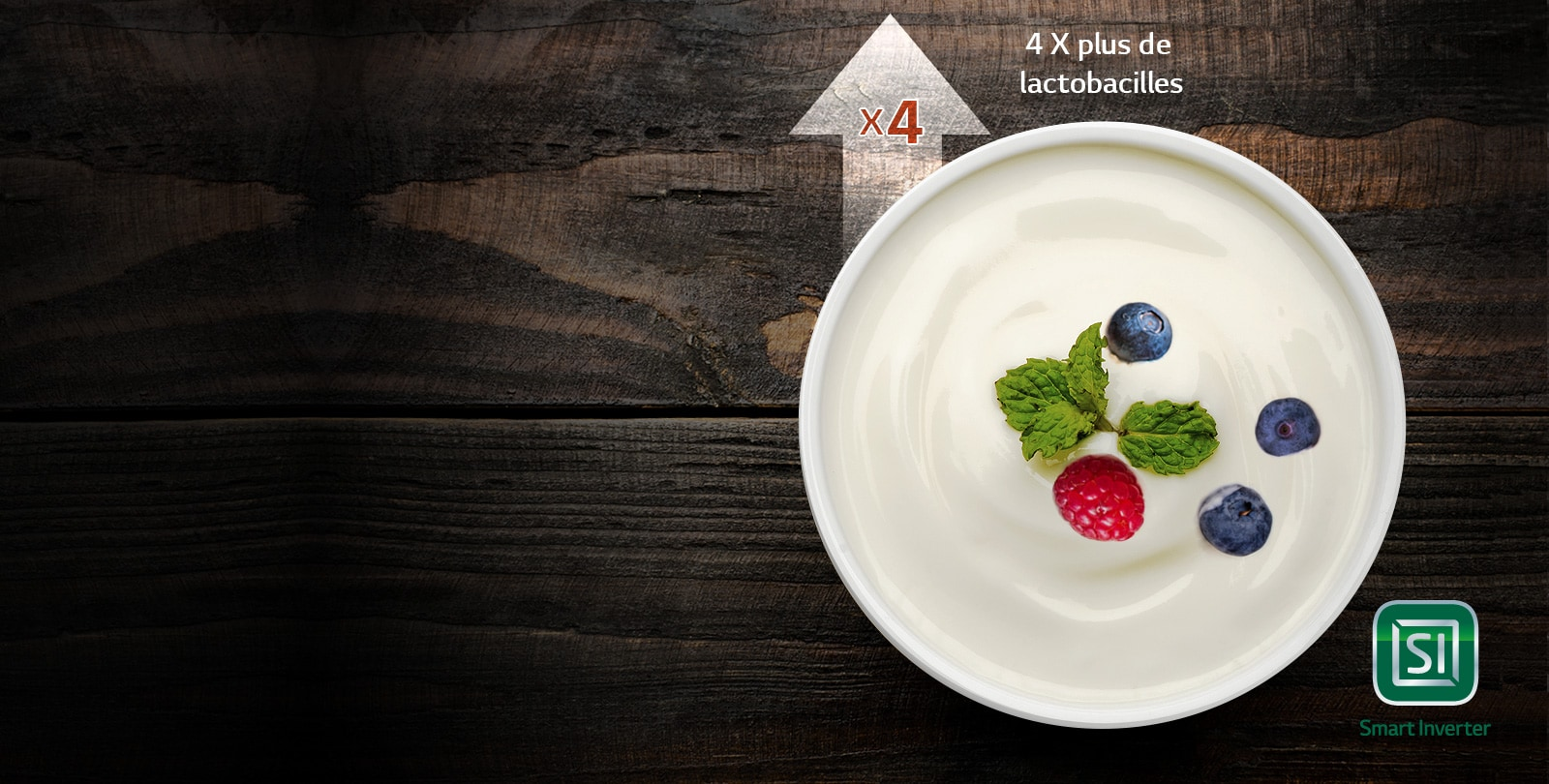 L'Art de la polyvalence3