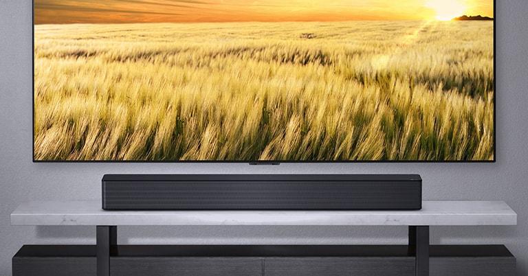 A TV is shown on a gray wall and LG Soundbar below it on a gray shelf. Blue-Ray disk below the shelf.
