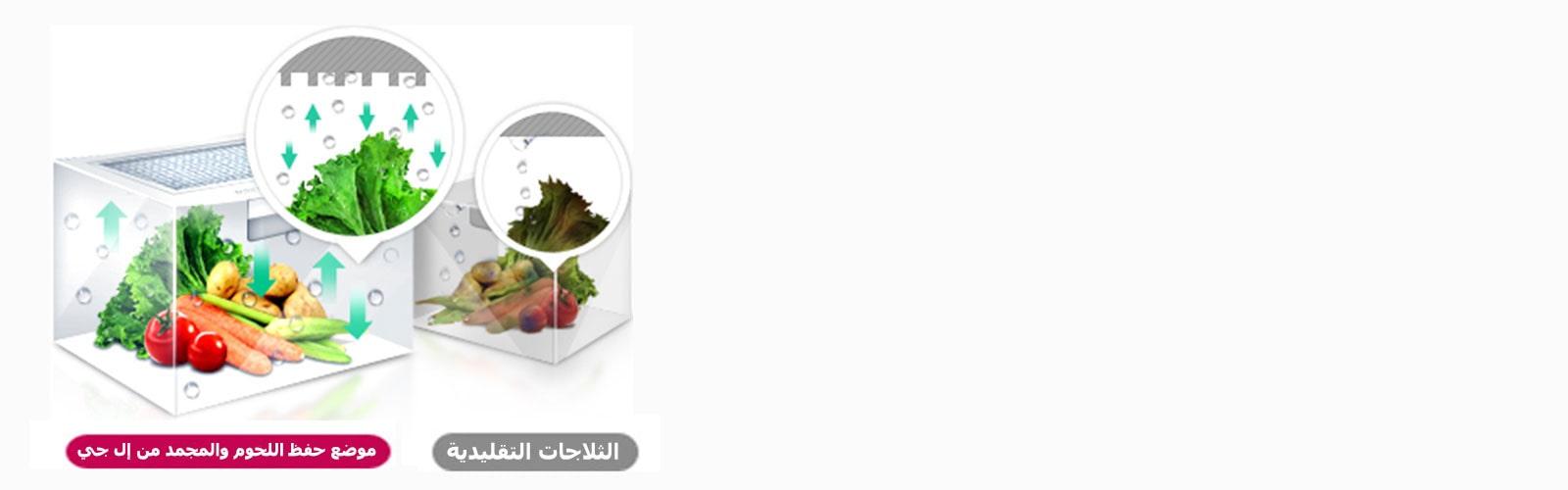 lg-refrigerator-lansen-feature_Moist_Balance_Crisper_D_V1
