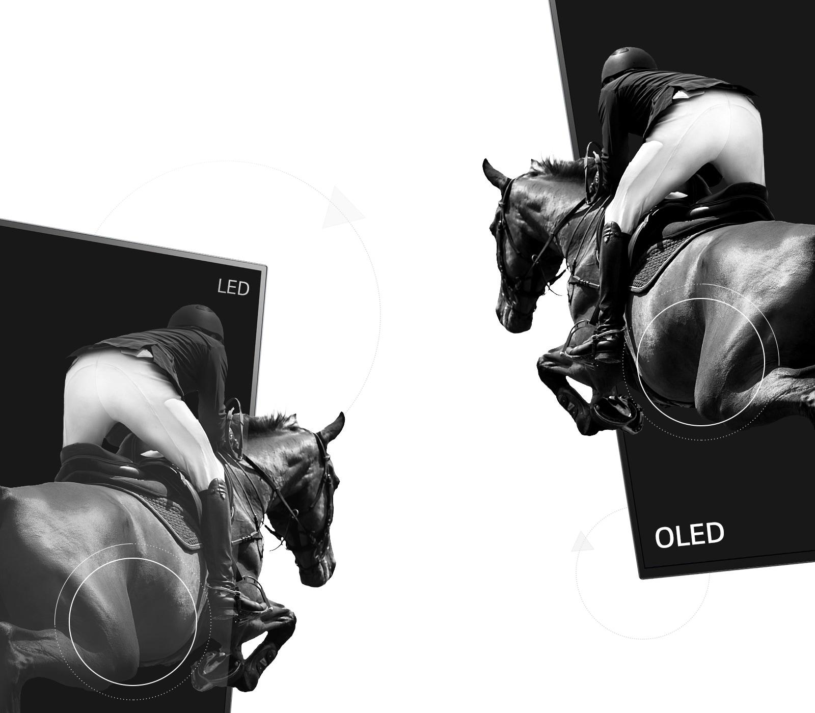La escena de un jinete montando a caballo en un LED con un contraste pobre y la otra mitad en un OLED con un contraste infinito (reproducir el vídeo)