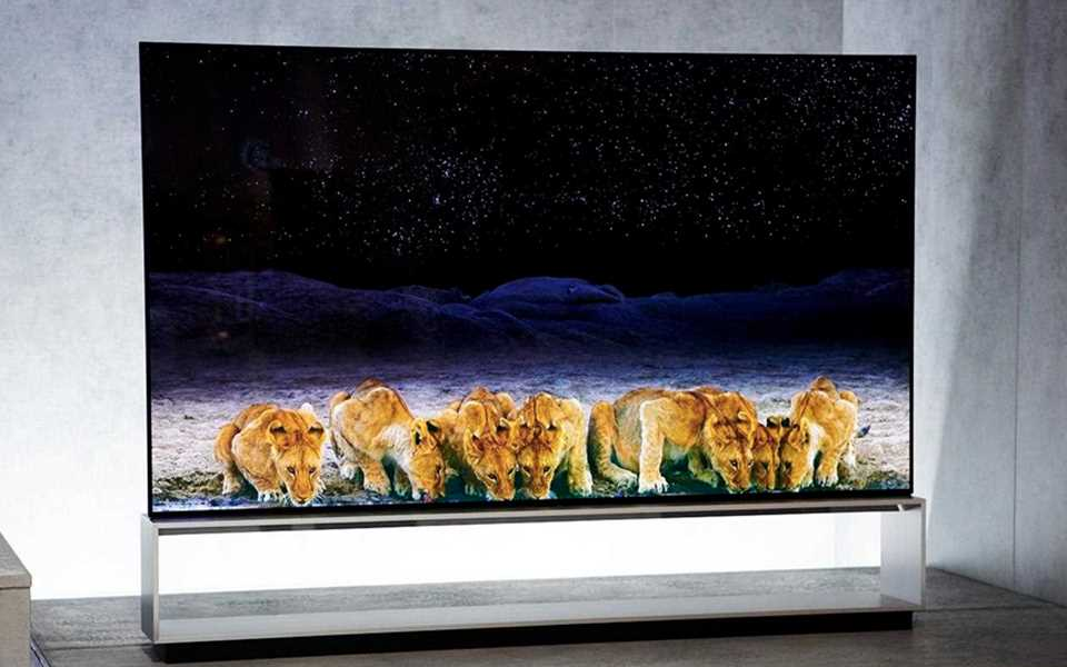 LG SIGNATURE OLED TV R delivering realistic picture quality so you feel as though you're in the wild with lions  | More at LG MAGAZINE