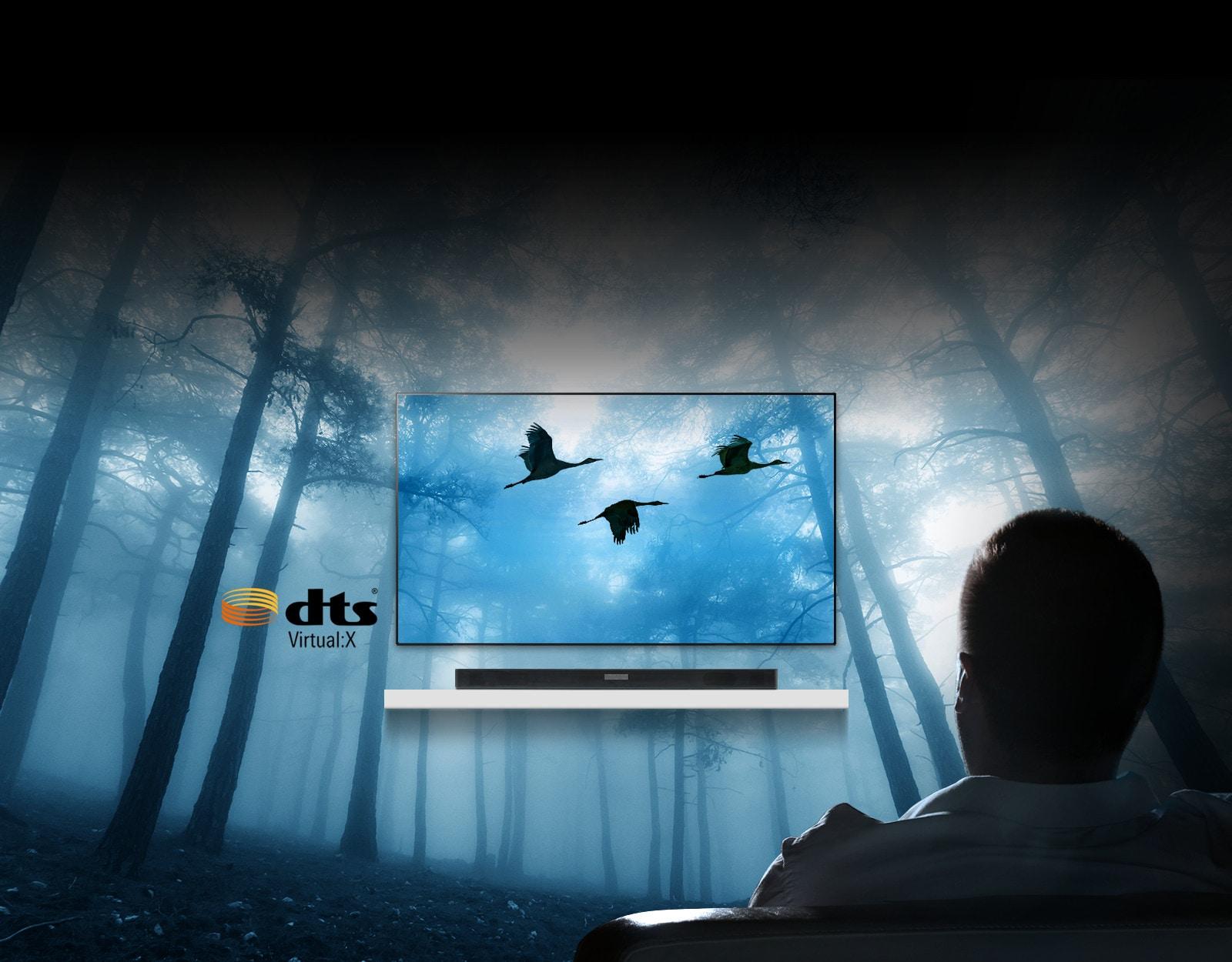 Une compatibilité DTS Virtual X époustouflante