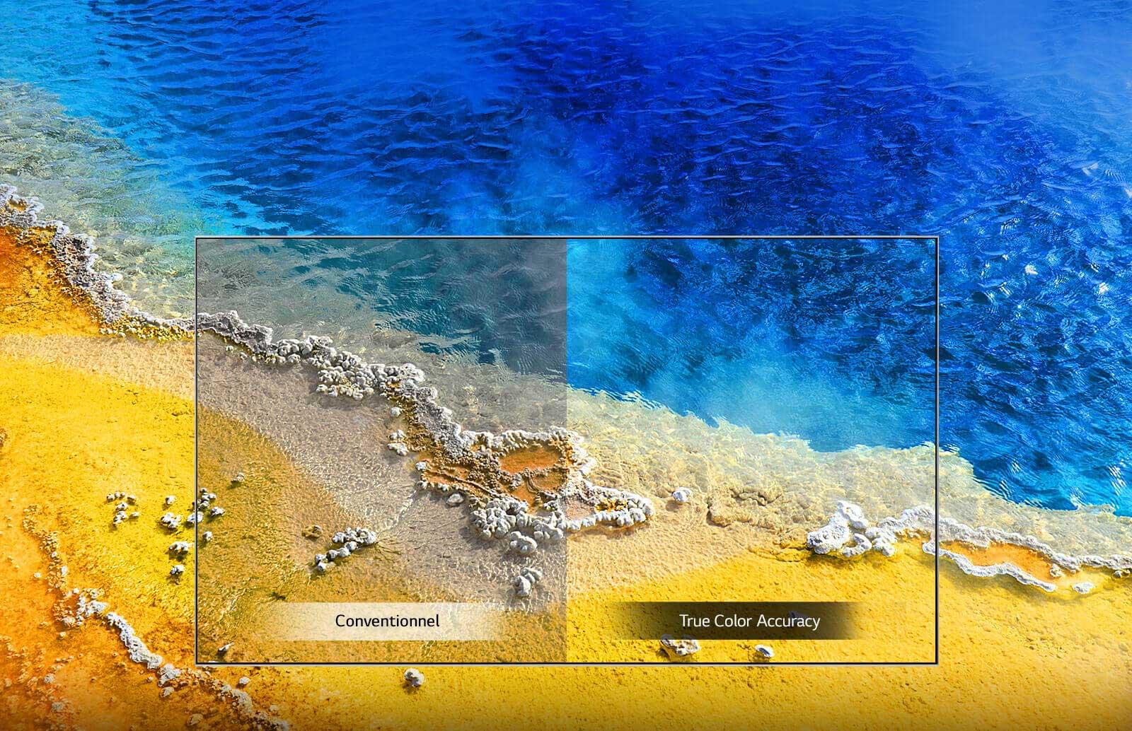 Plage colorée qui montre l'apport de la fonction True Color Accuracy