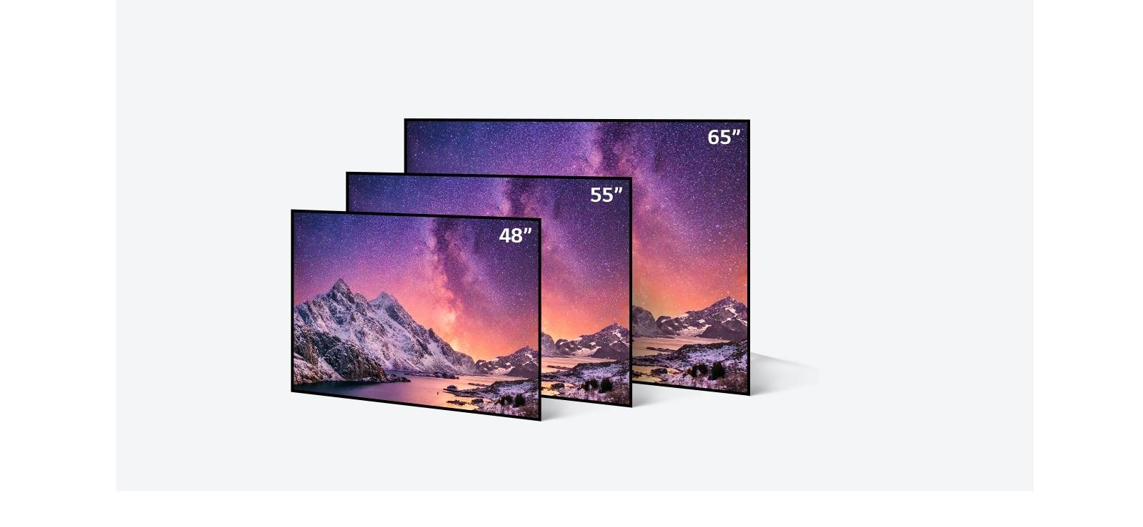 LG OLED 電視機身尺寸繁多(由 48 寸到 65 寸)