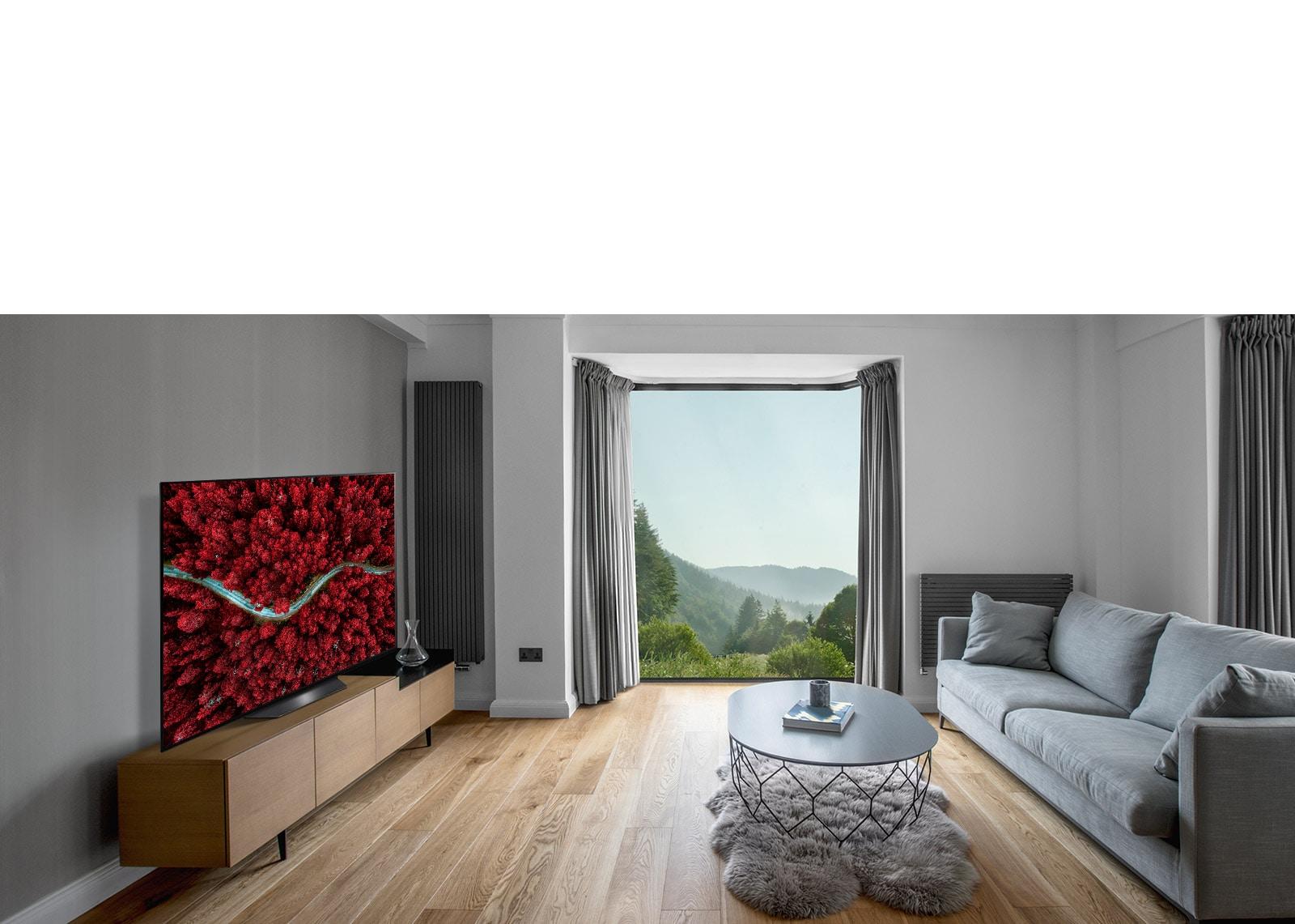 Dnevna soba s kavčem in televizorjem z zračnim pogledom na naravo