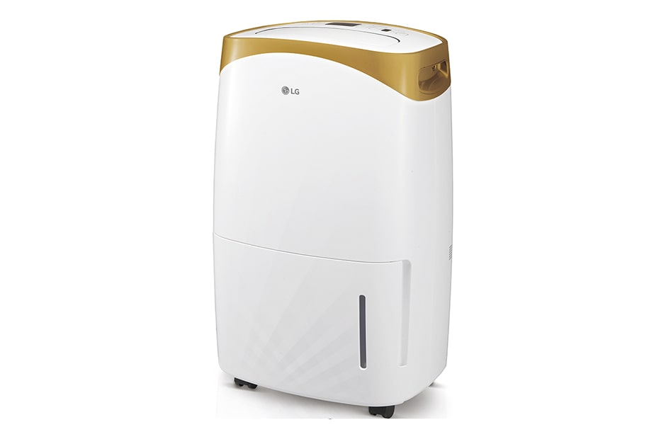 LG PuriCare™ Air Care RD136FGD1 1