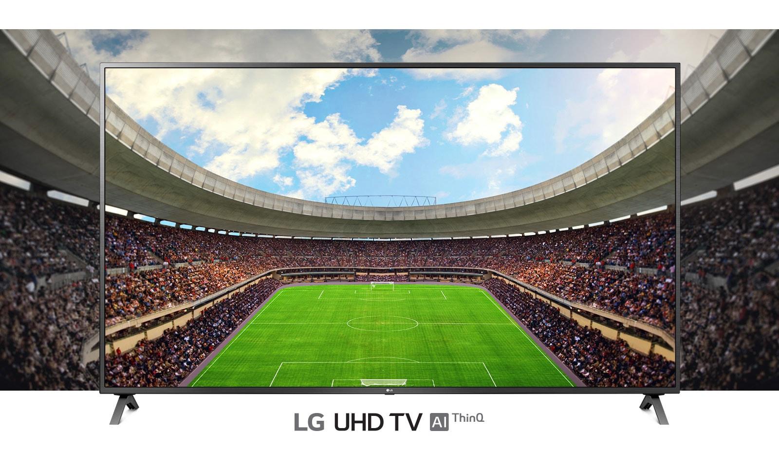 Panoramski prikaz nogometnog stadiona ispunjenog gledateljima prikazan u okviru televizora.