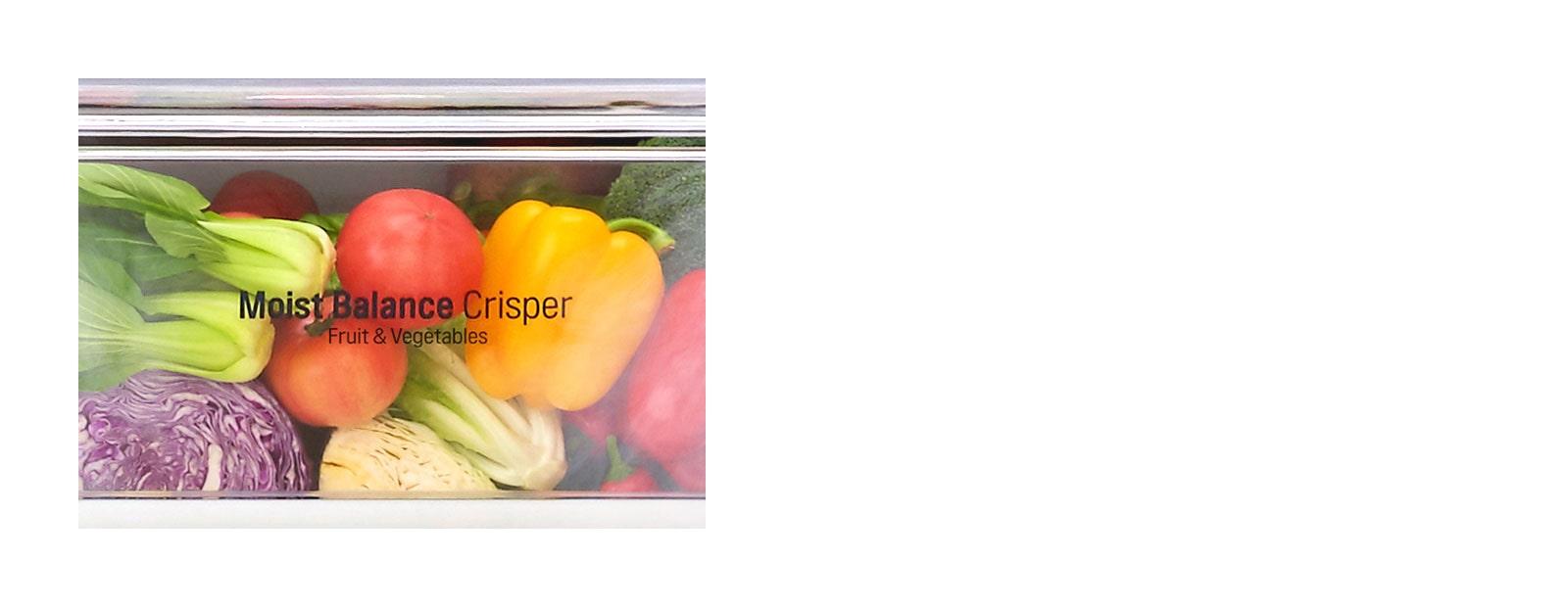 Moist Balance Crisper™1
