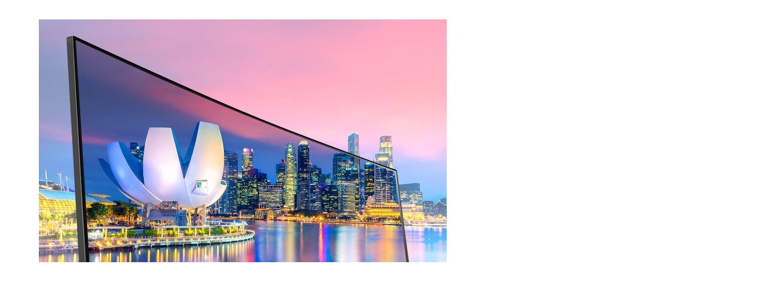 IPS עם sRGB 99% (טיפוסי): צבעים נאמנים למציאות וזווית צפייה רחבה יותר.