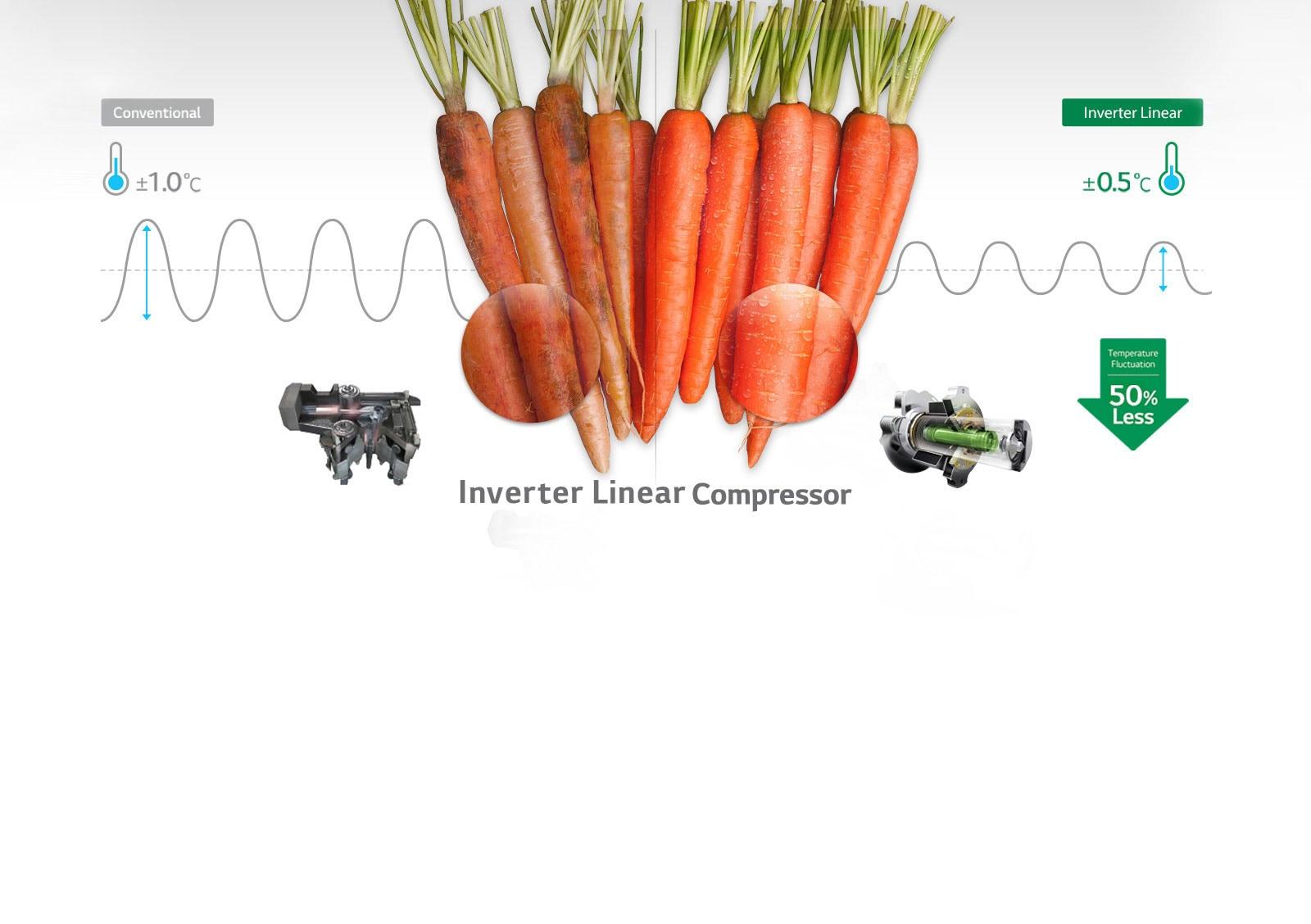LG GL-T322RPZ3 308 Ltr Inverter Linear Compressor