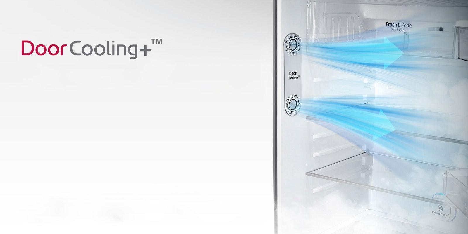 LG Door Cooling⁺™ Double Door Refrigerator
