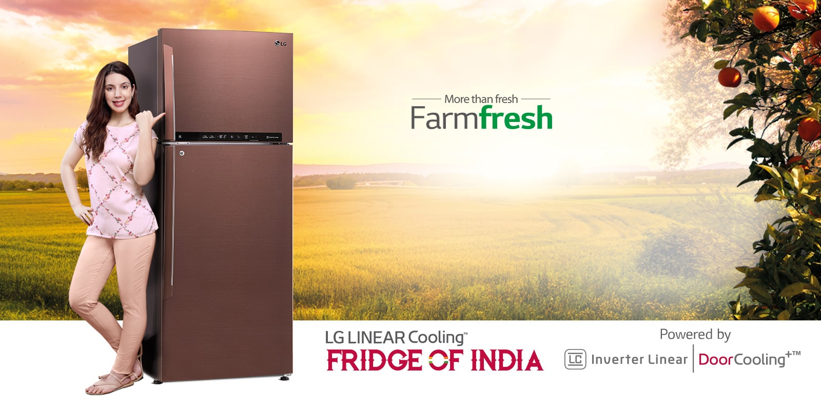 Refrigerators - Smart Single, Double and Multi Door Fridges | LG IN