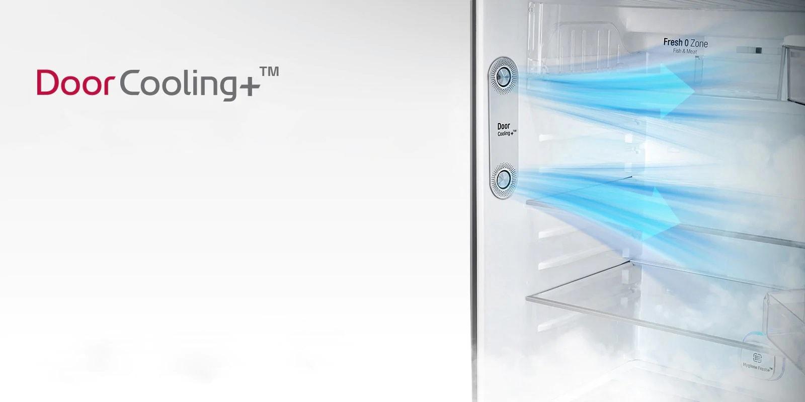 LG GL-T322RPZX Door Cooling+