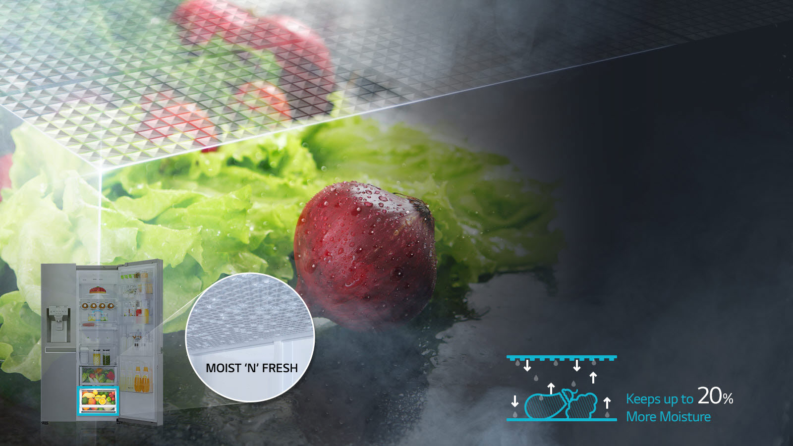LG MOIST 'N' FRESH Refrigerator