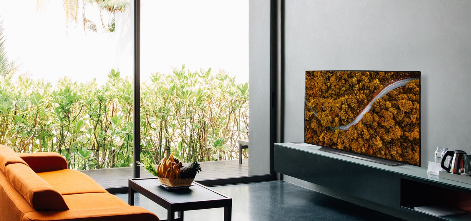 LG OLED55CXPTA stylish home addition