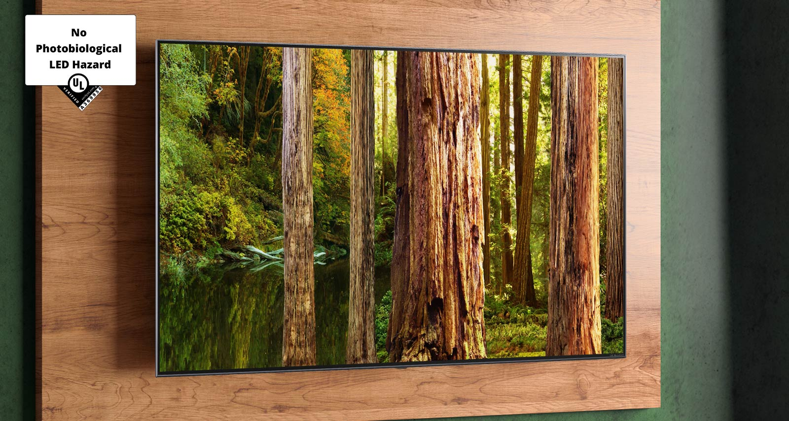 """The image of a forest on the TV screen with the mark of """"UL that certified No Photobiological LED Hazard"""""""