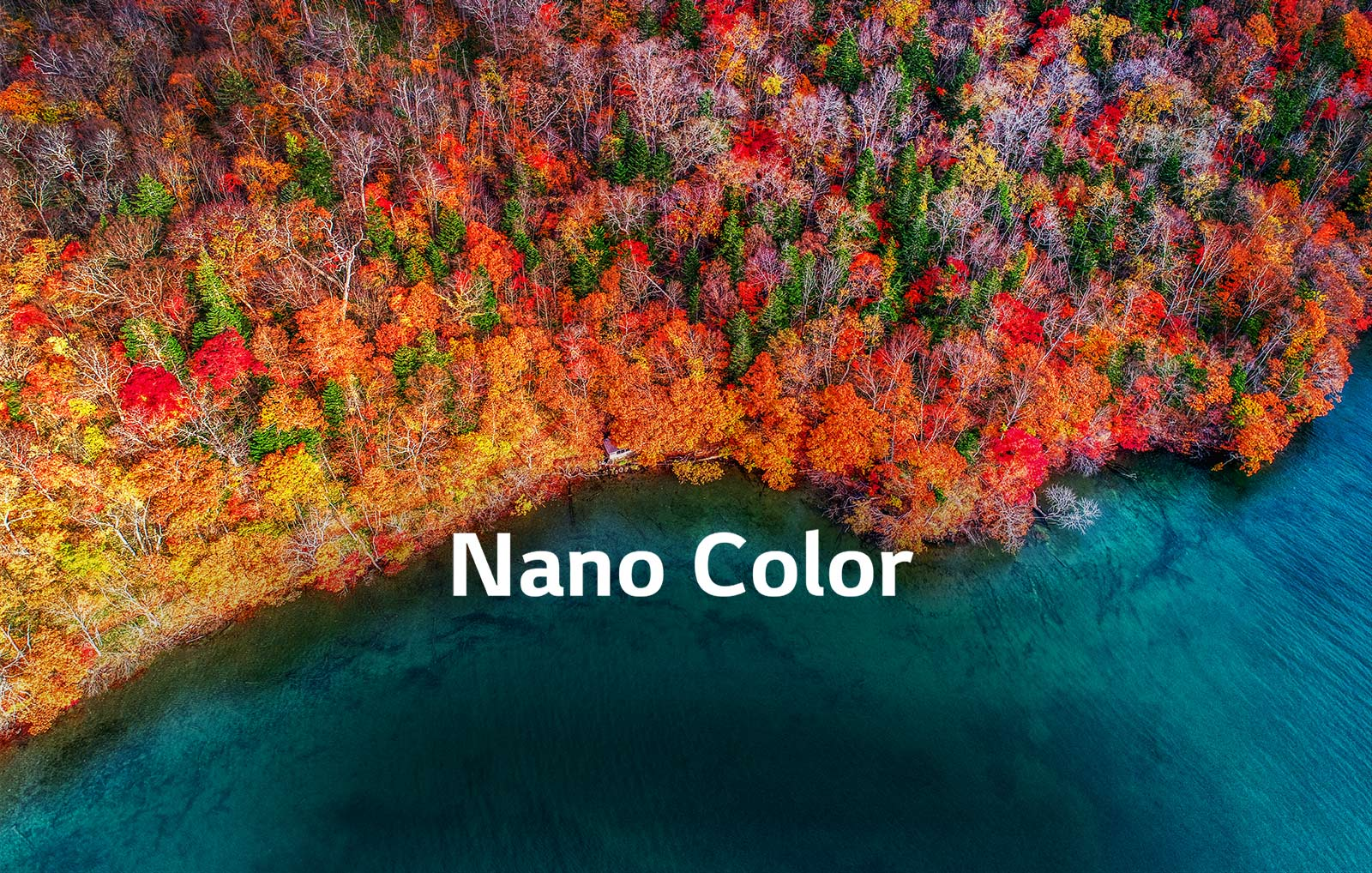 LG Nano Color TV