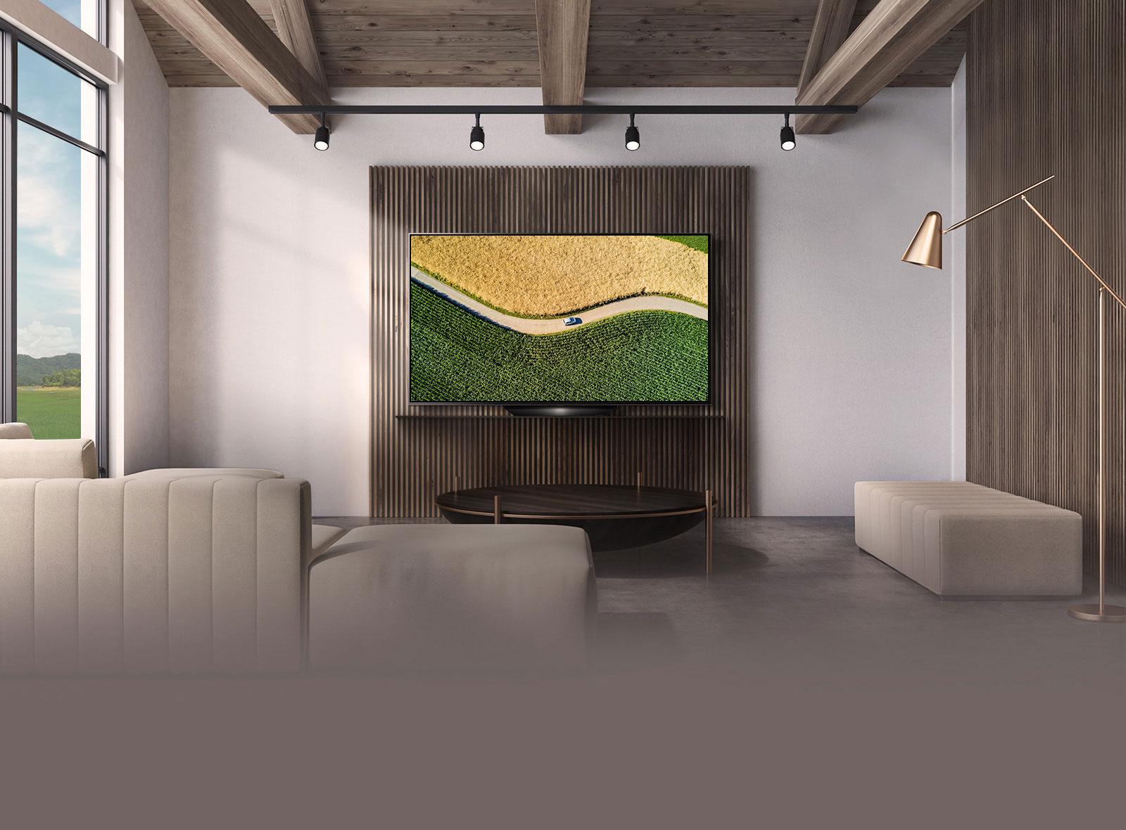 LG Sleek Design OLED TV