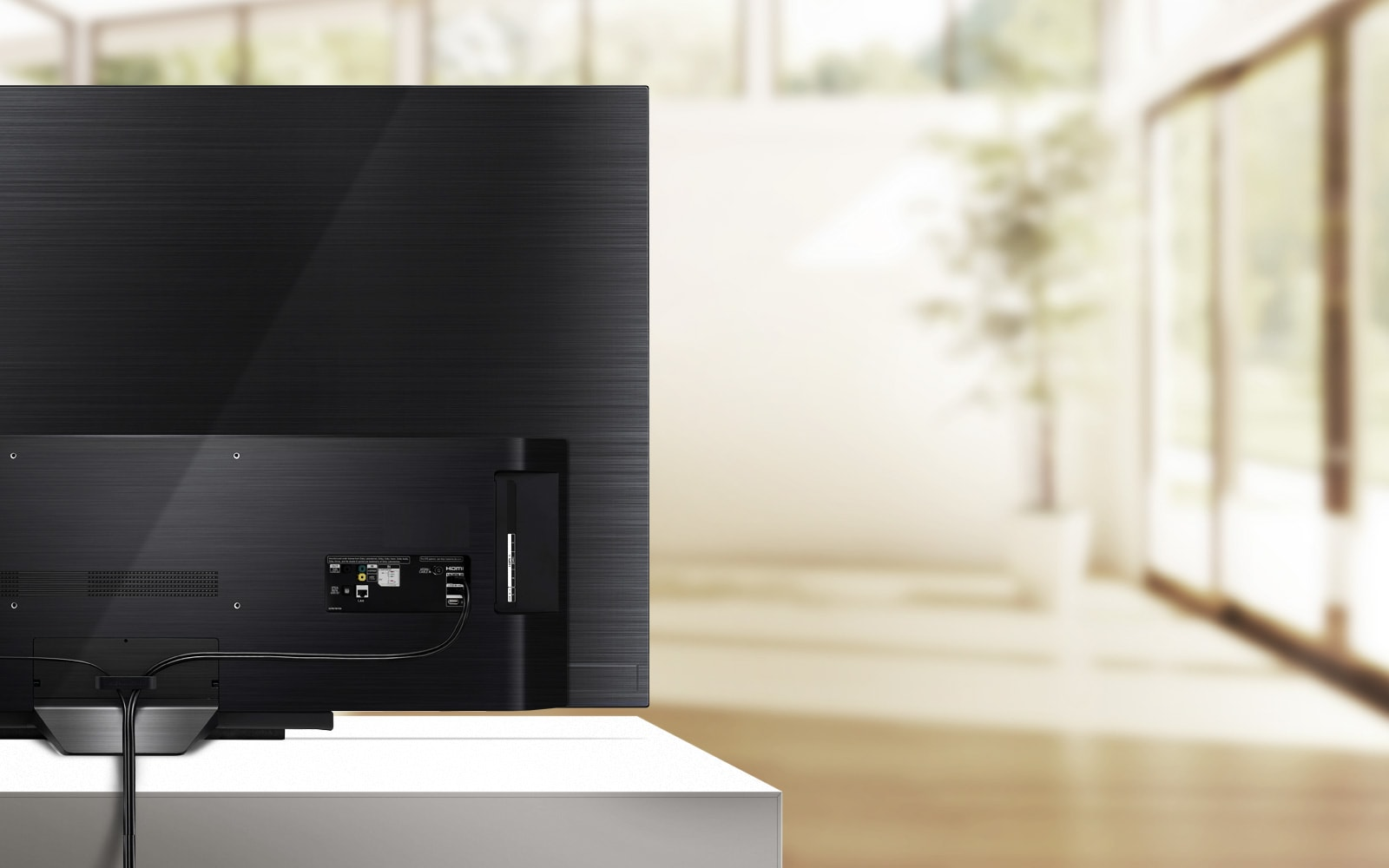 LG Cable Management OLED TV