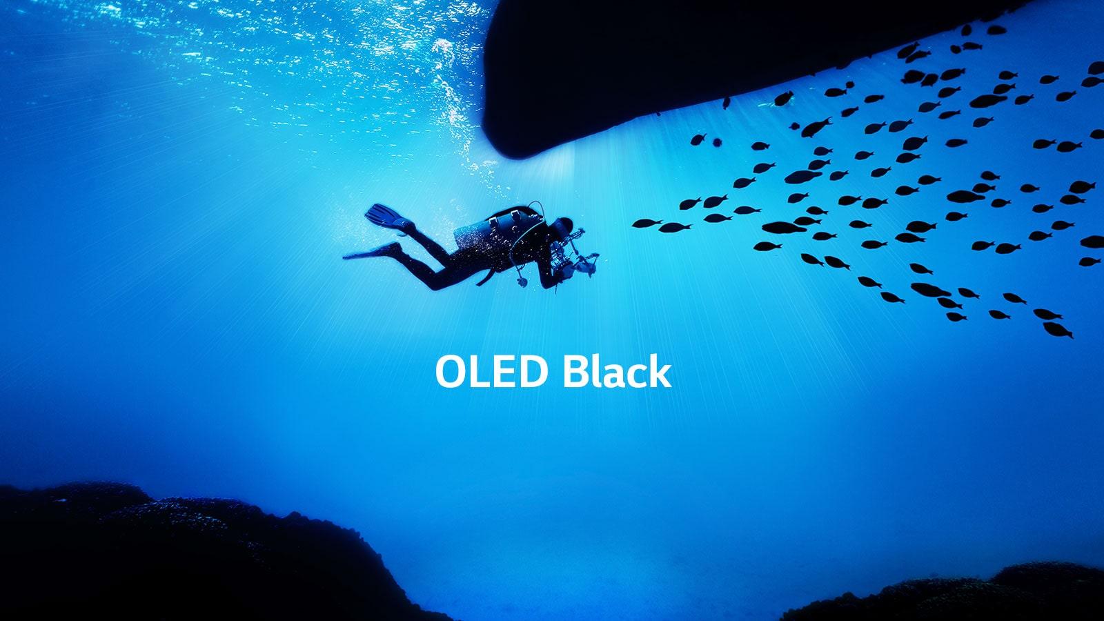 LG OLED Black TV