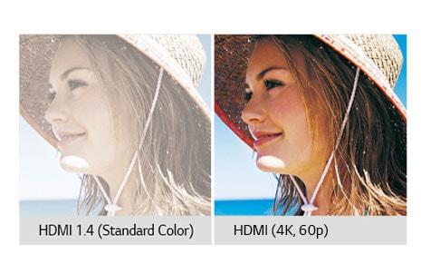HDMI (4K 60p)