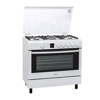 Gas Cooker1