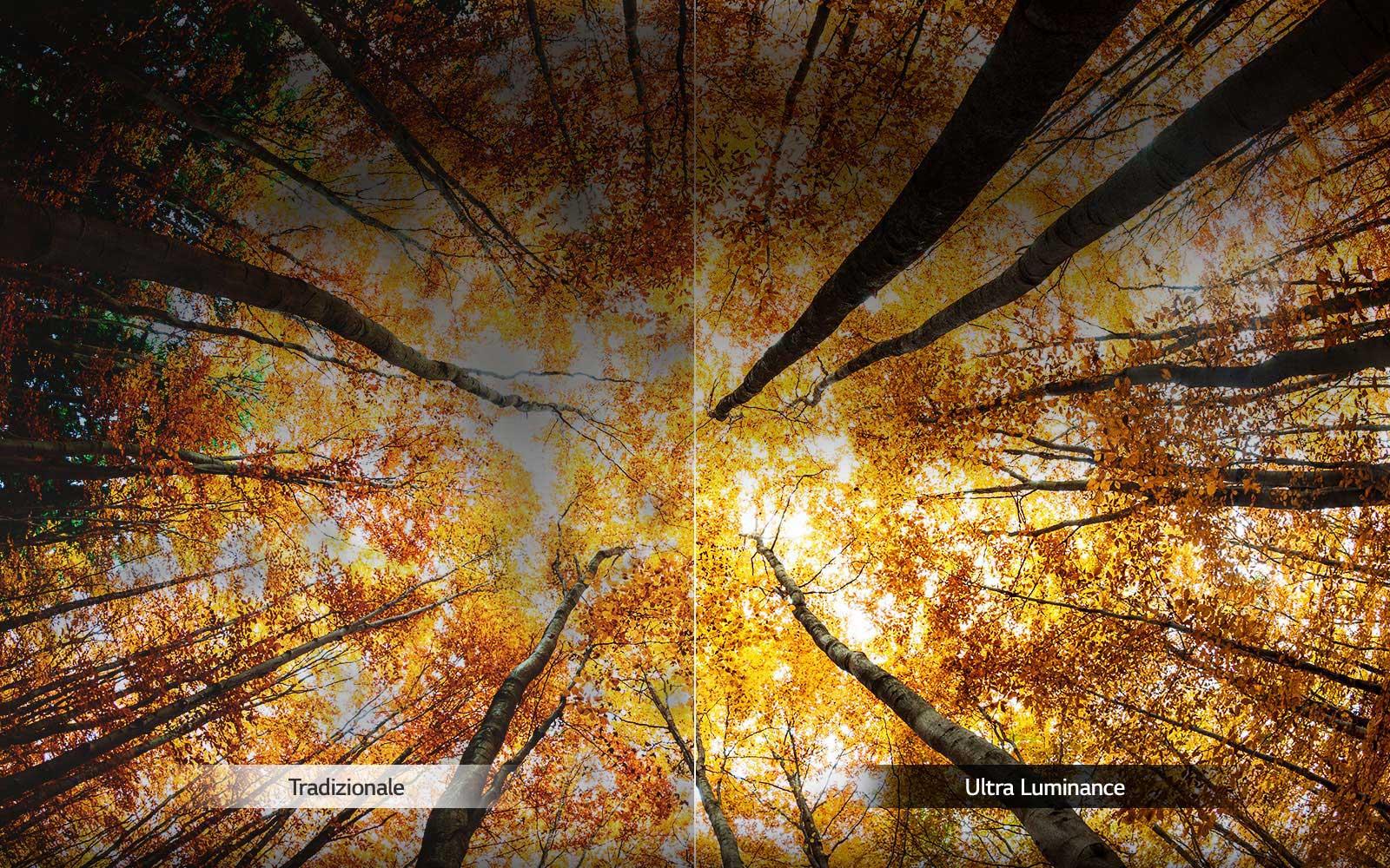 05_UK65_A_Ultra_Luminance_06102018_desktop_V02