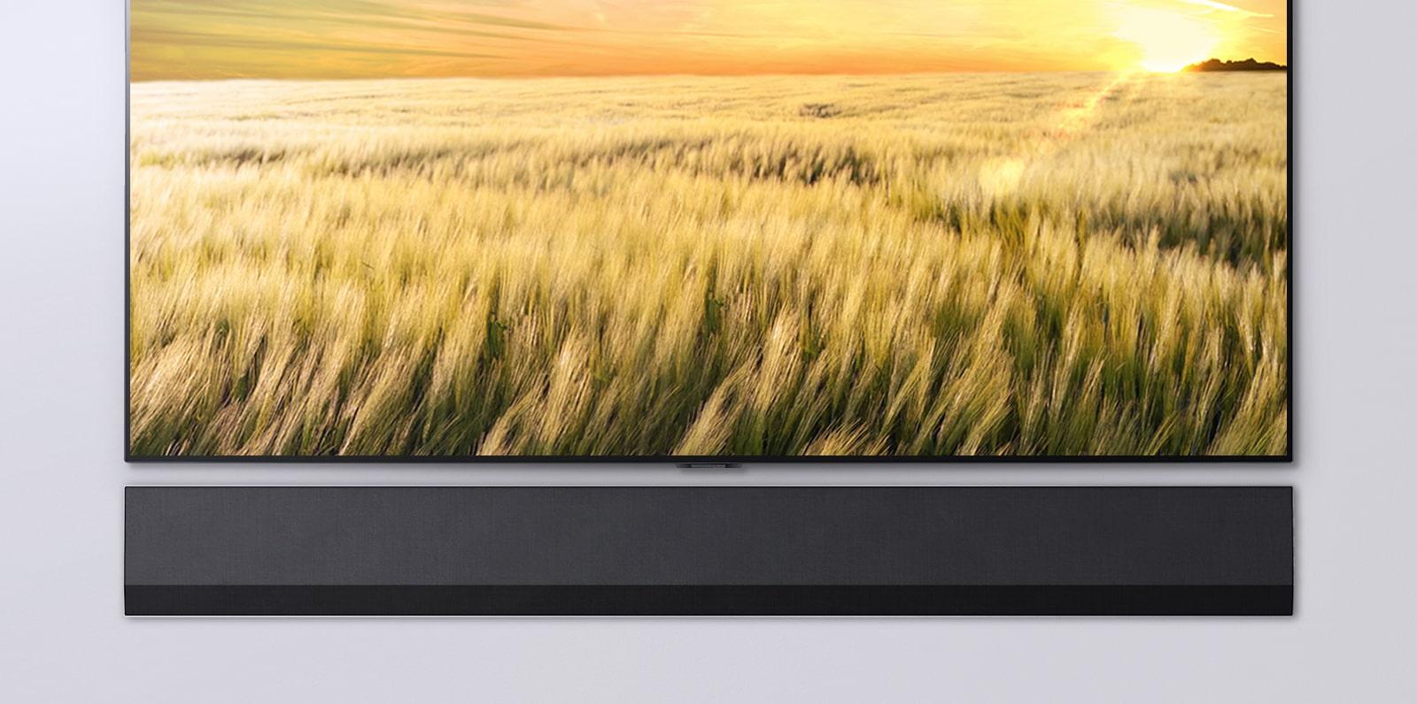 Vista frontale di una TV e una soundbar. La TV mostra un canneto al tramonto.