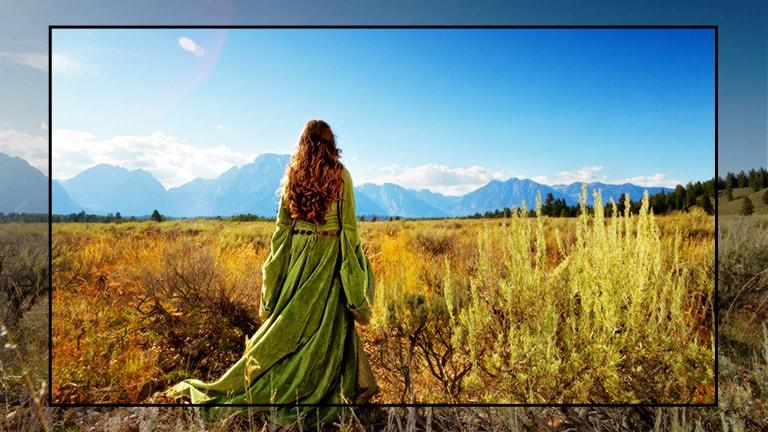 Lo schermo di un TV con la scena di un film fantasy e una donna in mezzo ai campi che guarda verso le montagne.