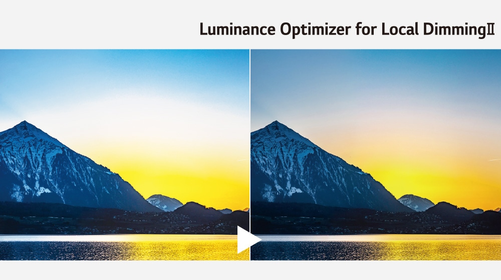Luminance Optimizer for Local DimmingII1