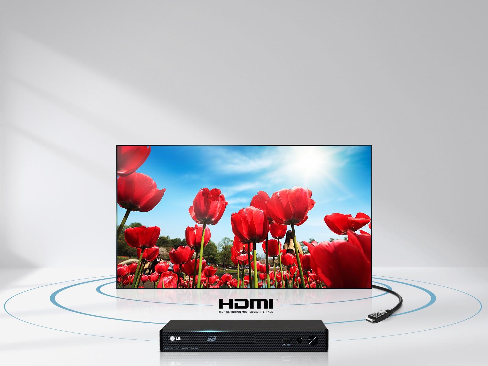 Audio un video atskaņošanai pietiek ar HDMI vadu