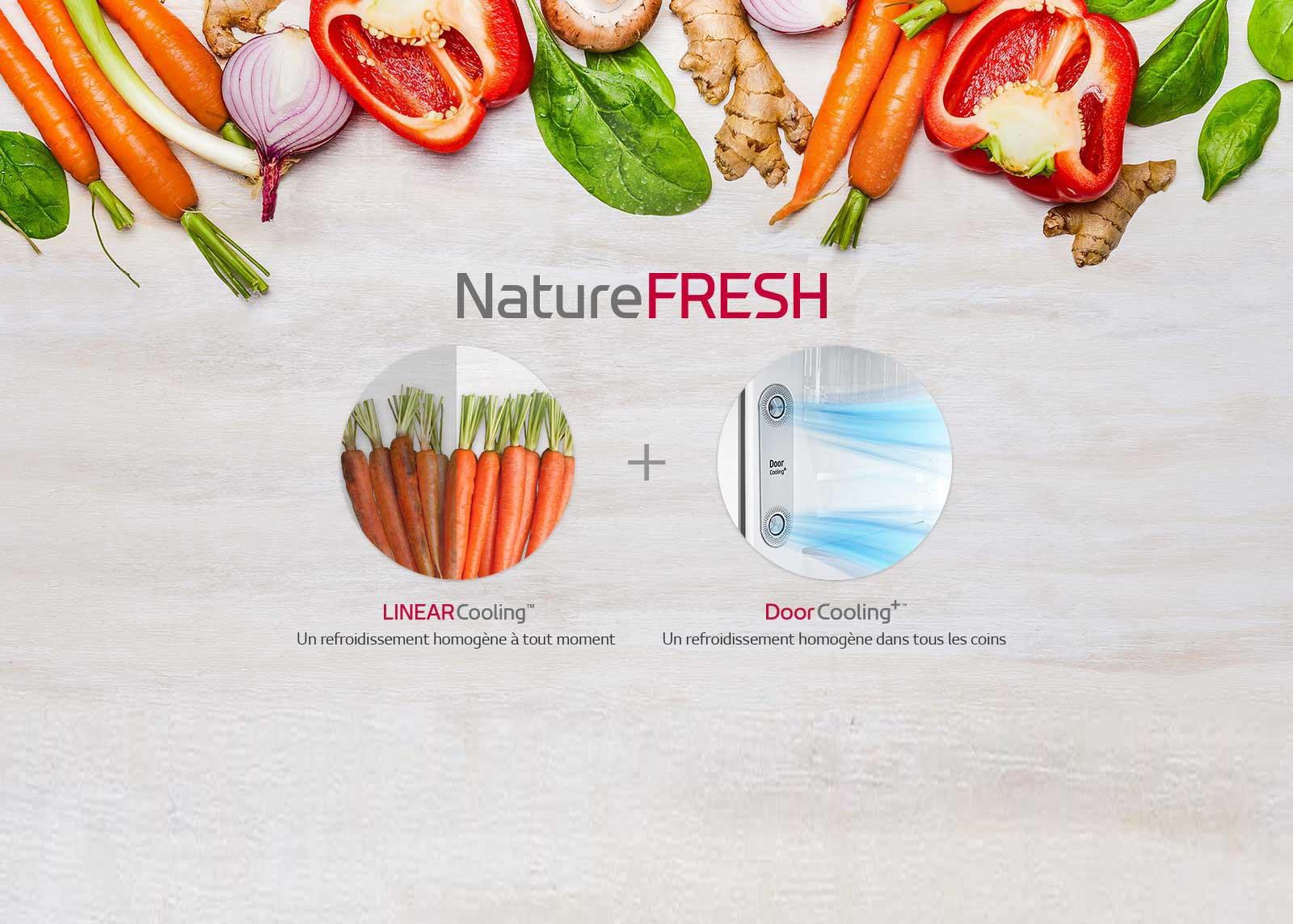 Comment garder nos aliments frais longtemps?<br>1