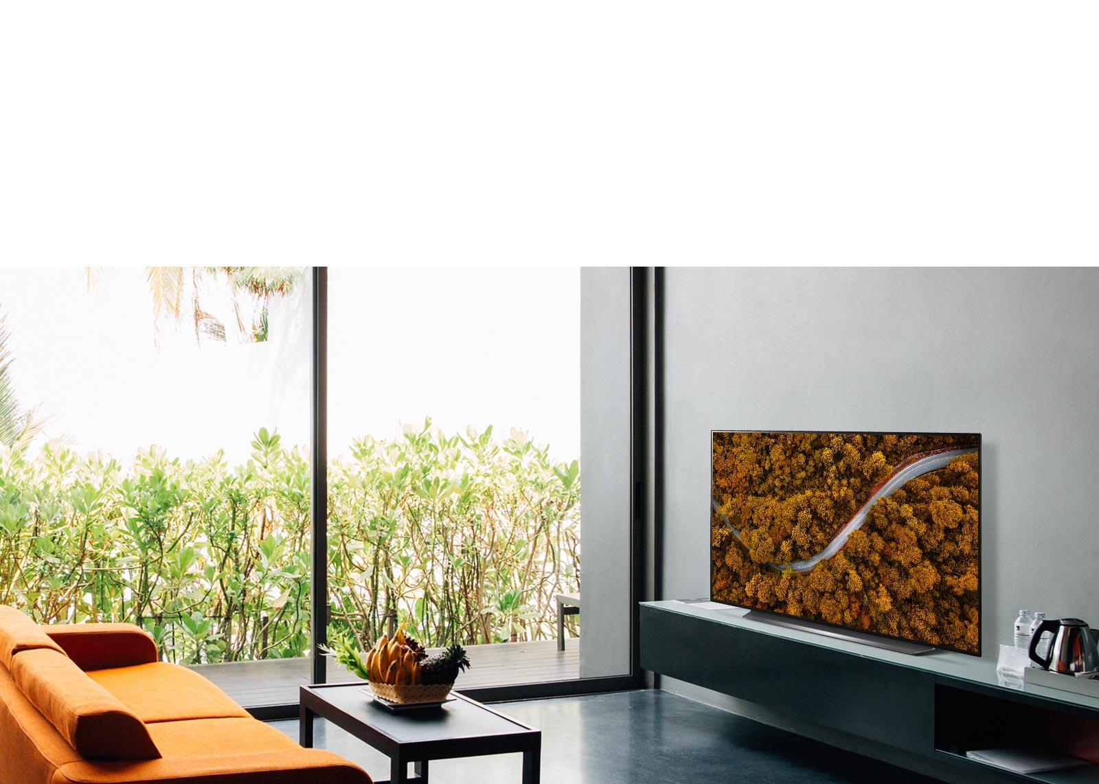 Salon avec un canapé et un téléviseur présentant une vue aérienne de la nature