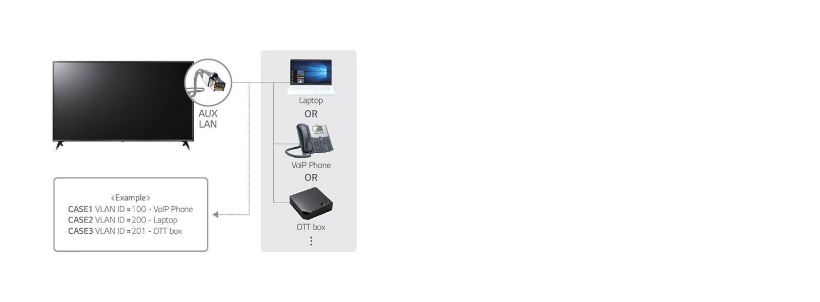 11_LAN-out-with-VLAN-Virtual-LAN-ID_1531984168047