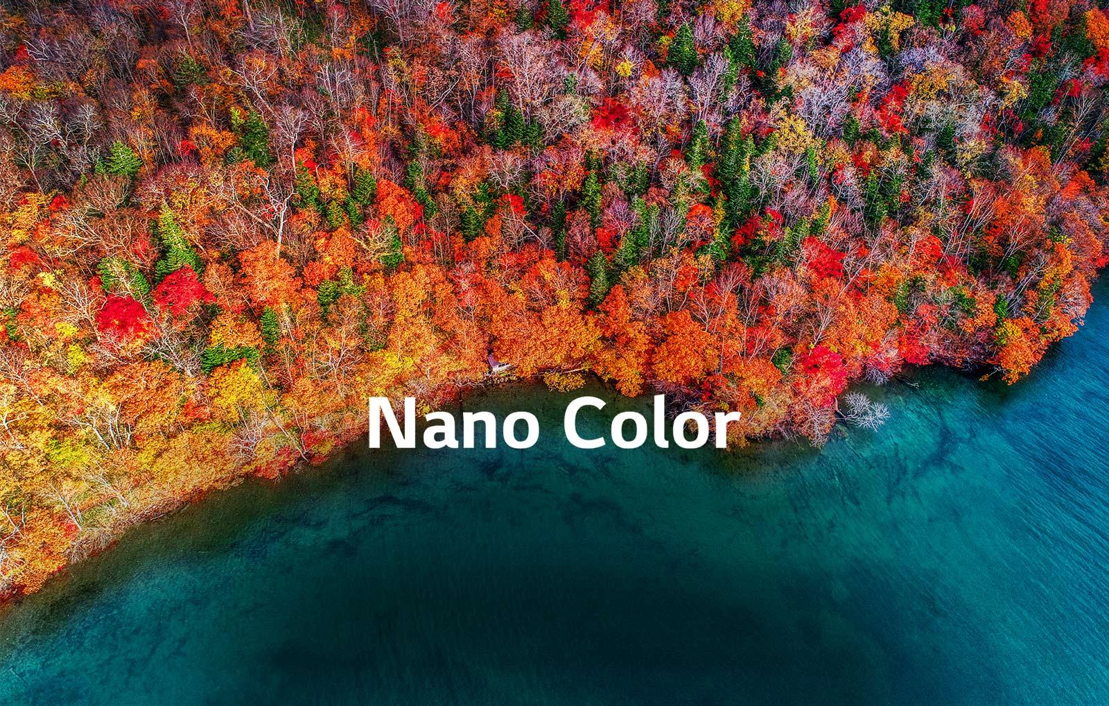 TV-NanoCell-SM81-02-Nano-Color-Desktop_V1
