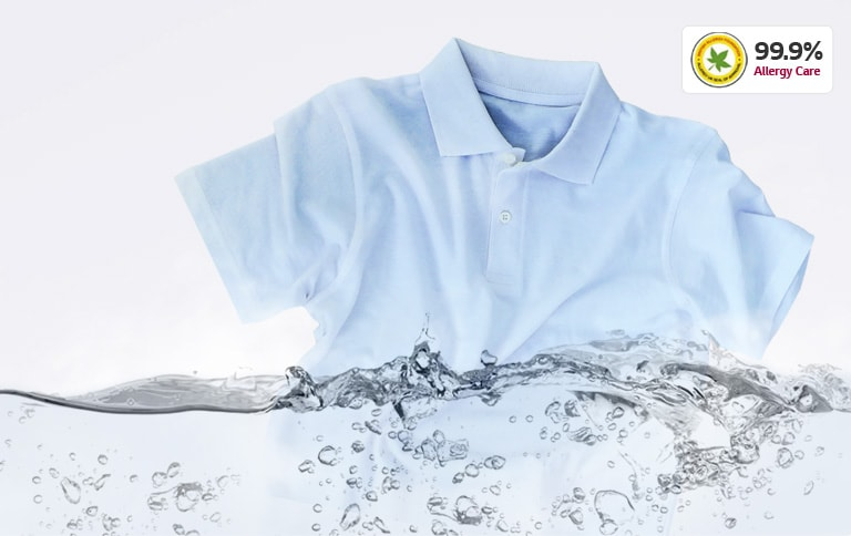 Stain & Allergy Care with Steam4