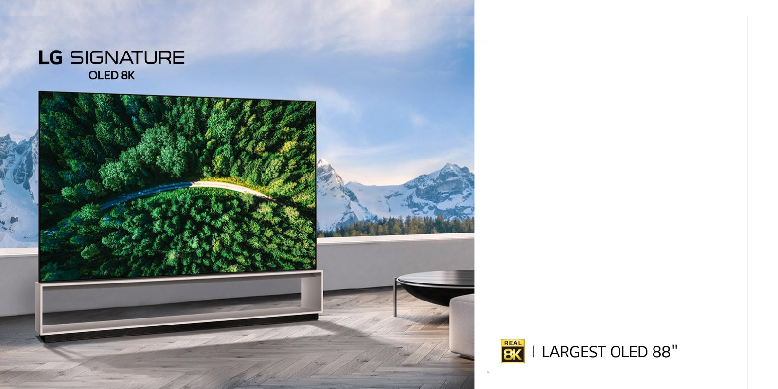 TV-SIGNATURE-OLED-Z9-Banner-D