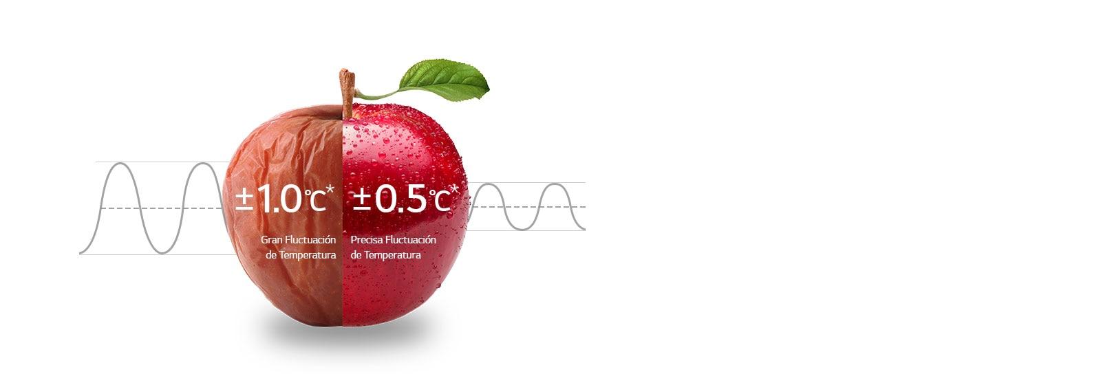 Refrigeración Uniforme 24 horas1