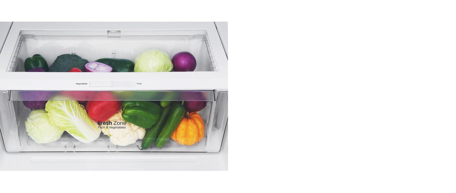 Frutas y verduras más frescas por más tiempo1