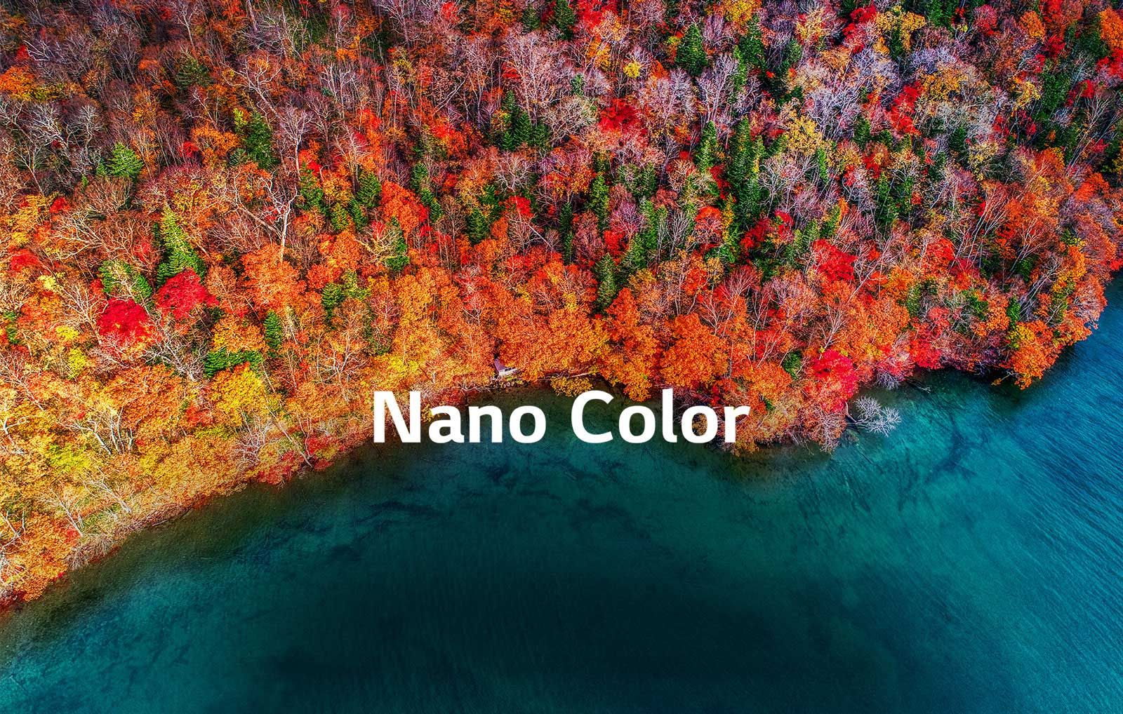 TV-NanoCell-SM80-02-Nano-Color-Desktop_v001